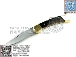 "buck巴克 0110BRSFG Folding Hunter Finger Grooved 经典折叠猎人""折"""