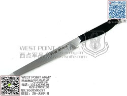 ColdSteel冷钢 53CT The Spike Tanto Point刺(现货)