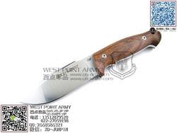 """Viper Knives 意大利毒蛇 V4874CB N690Co钢 山多木柄""""直"""""""